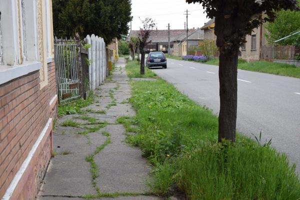 Înverzesc trotuarele în Carei sub conducere exclusiv UDMR