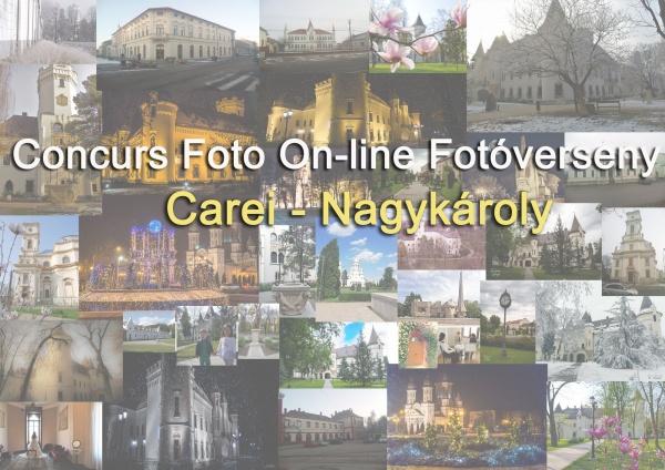 """Câștigătorii concursului online de fotografie """"Promovează-ți orașul"""" Carei"""