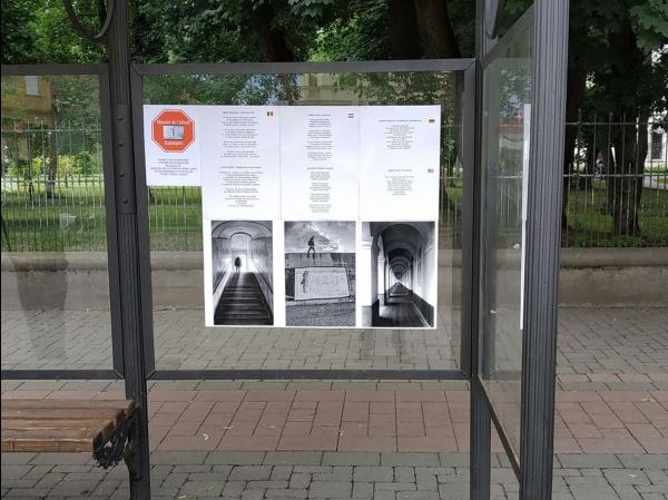 Poezii în stațiile de autobuz din Carei
