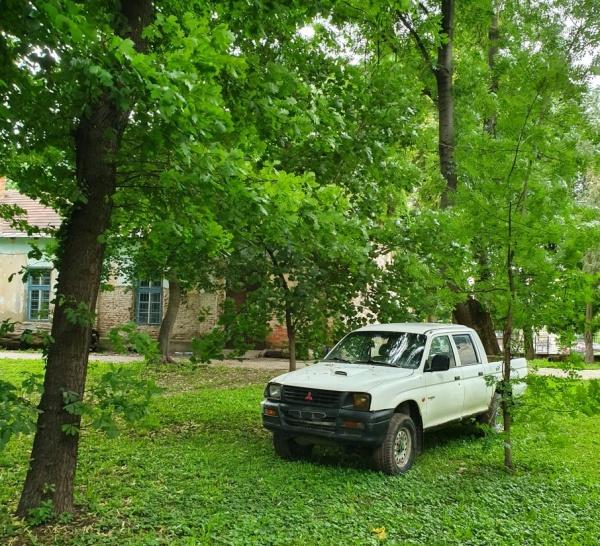 Parc Dendrologic sau cimitir de mașini?