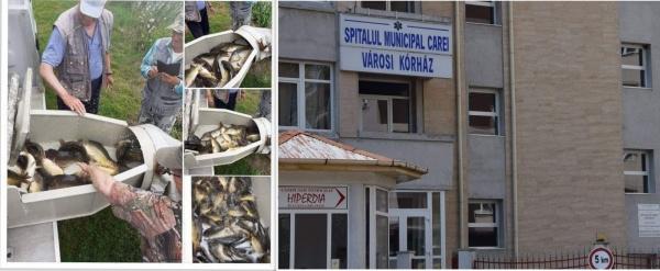 Când popularea cu crap a bălții Ianculești e mai importantă decât deschiderea Spitalului Municipal Carei