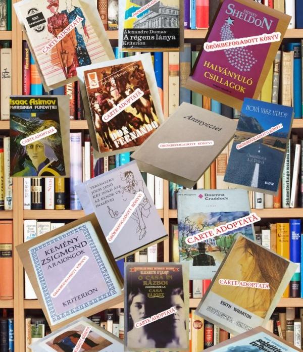 La Carei s-au adoptat peste 20 de cărți