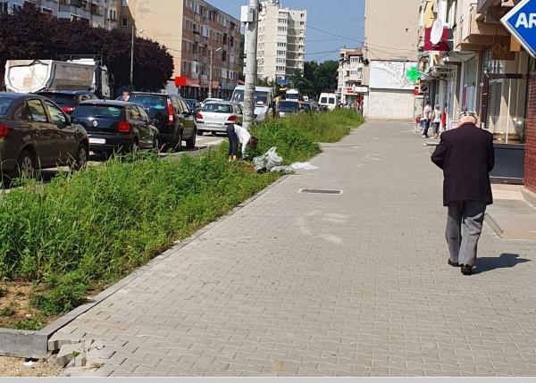 Rușine administrației Kovacs-Keizer-Beko din Carei! Careieni care suplinesc indolența conducerii orașului