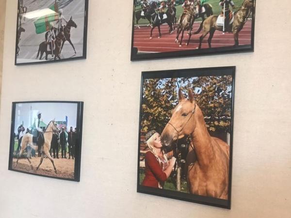 """Expoziție """"Cultură și tradiție în Turkmenistan"""" în Parcul Dendrologic din Carei"""