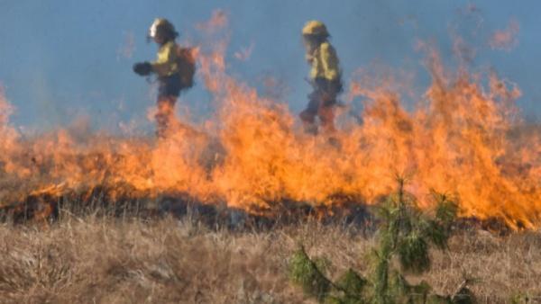 Atenție fermieri! Sunteți obligați să vă angajați servicii de urgență private pentru stingerea eventualelor incendii