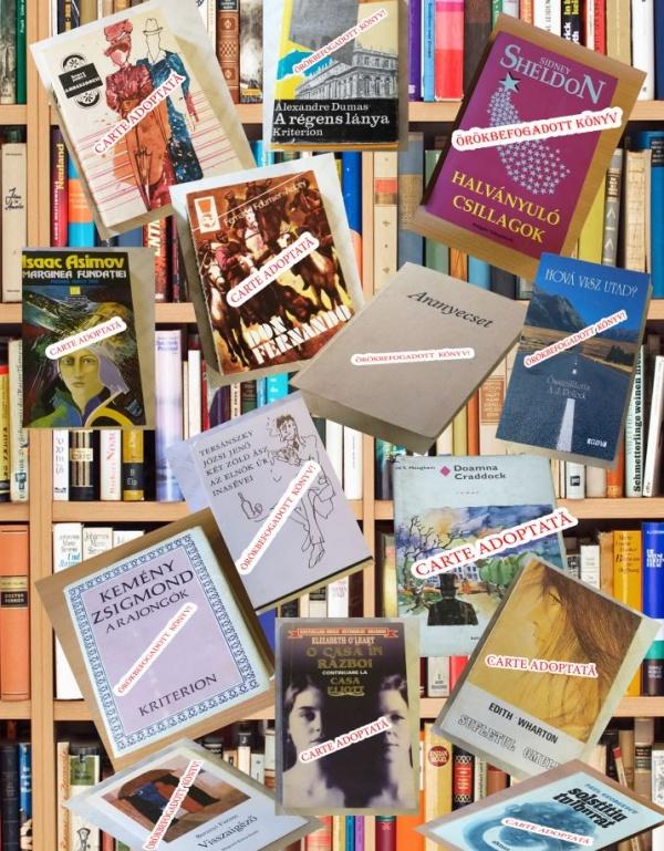 """Continuă campania """"Adoptă o carte!"""" la Carei"""