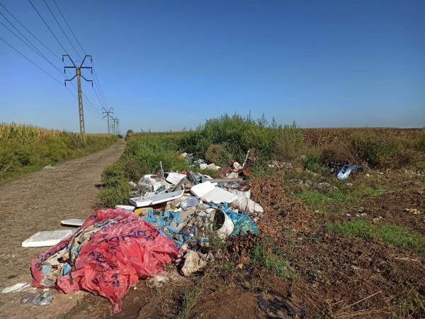 Garda de Mediu Satu Mare a aplicat 27 de sancțiuni pentru depozitări necontrolate de deșeuri
