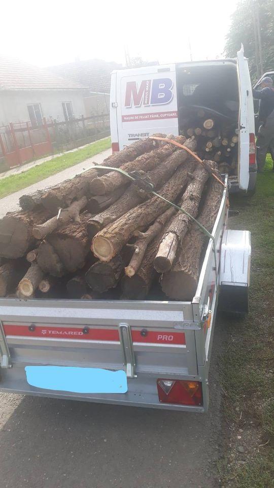 Transport ilegal de lemne sancţionat de jandarmi