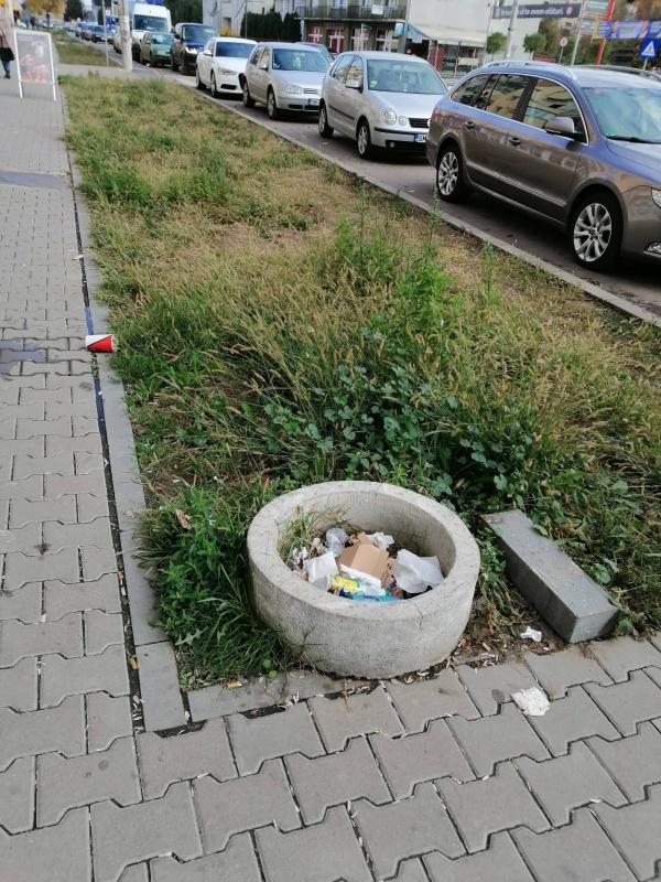 Noi coșuri stradale de gunoi pe calea Mihai Viteazul din Carei