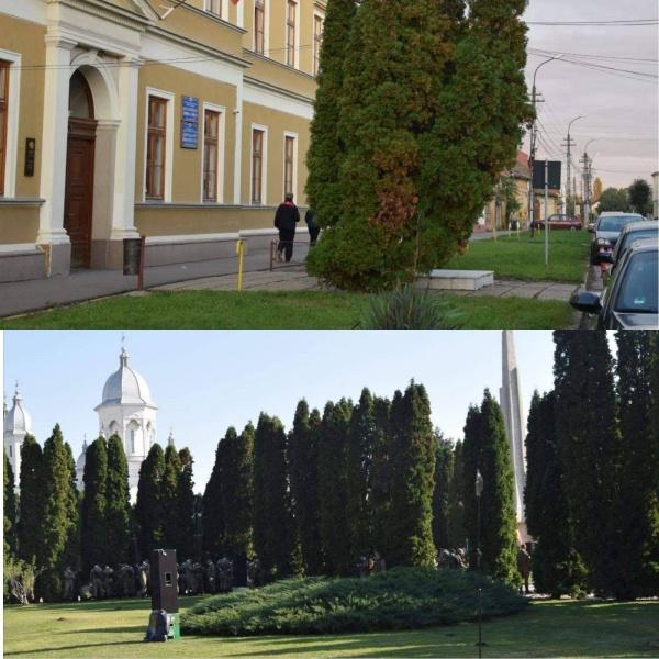 Un careian pune la treabă Ministerul Culturii și denunță ascunderea unor  monumente românești simbol