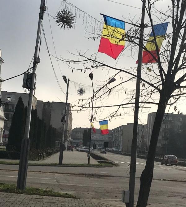 Au apărut și la Carei steagurile naționale