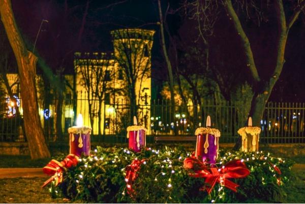 Programul de vizitare al Castelului Károlyi și Muzeului Carei