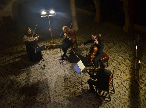 Spectacol omagial elegant dedicat Zilei Culturii Naționale la Castelul din Carei