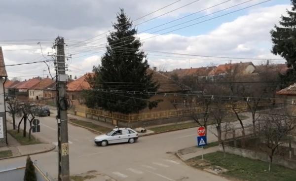 Mașini cu numere de Ungaria fac legea în Carei. VIDEO