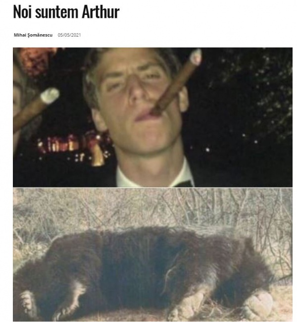 Toți suntem Arthur! Ministrul UDMR de la Mediu a pus gând rău urșilor