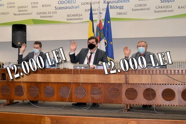 """Consiliul Județean Satu Mare are vicii, dar nu are """"vici""""!"""
