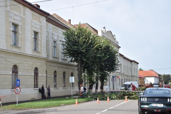 Oferta educațională de la Liceul Iuliu Maniu din Carei nu cuprinde clase cu predare în limba română pentru ospătari