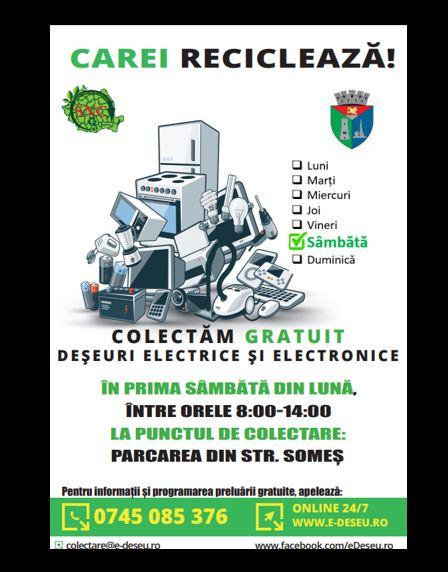 Colectare de deșeuri electrice la Carei