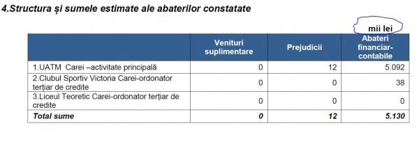 Abateri financiar contabile de peste 5 milioane de lei la Primăria Carei