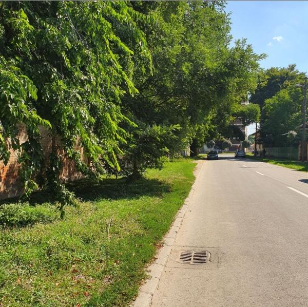 Mai dispare un spațiu verde în municipiul Carei